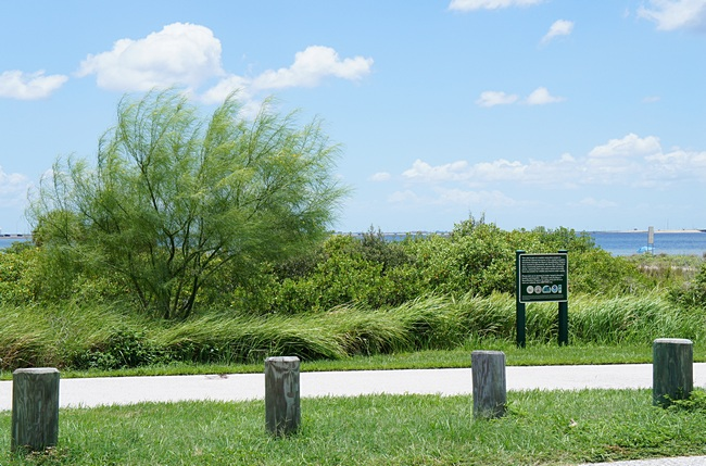 Cypress Point Park