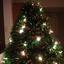 Do-it-yourself Christmas Tree :-)
